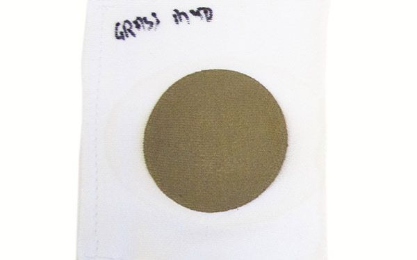 Grass stain for a laundry detergent test