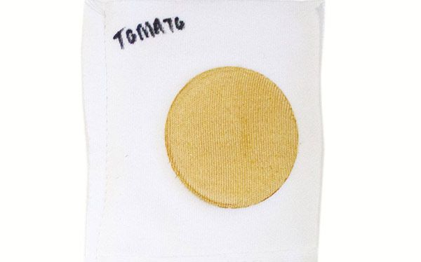 Tomato stain for a laundry detergent test