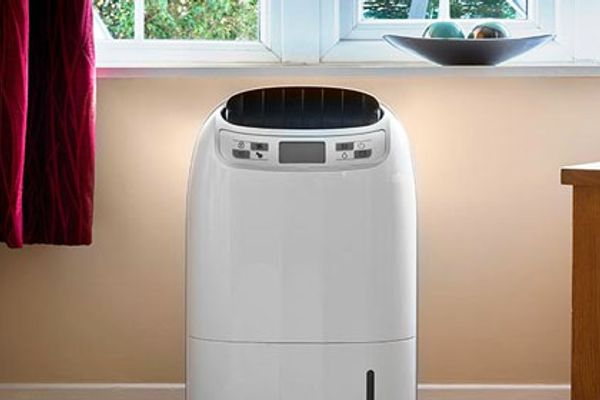 The best dehumidifiers of 2020, according to experts