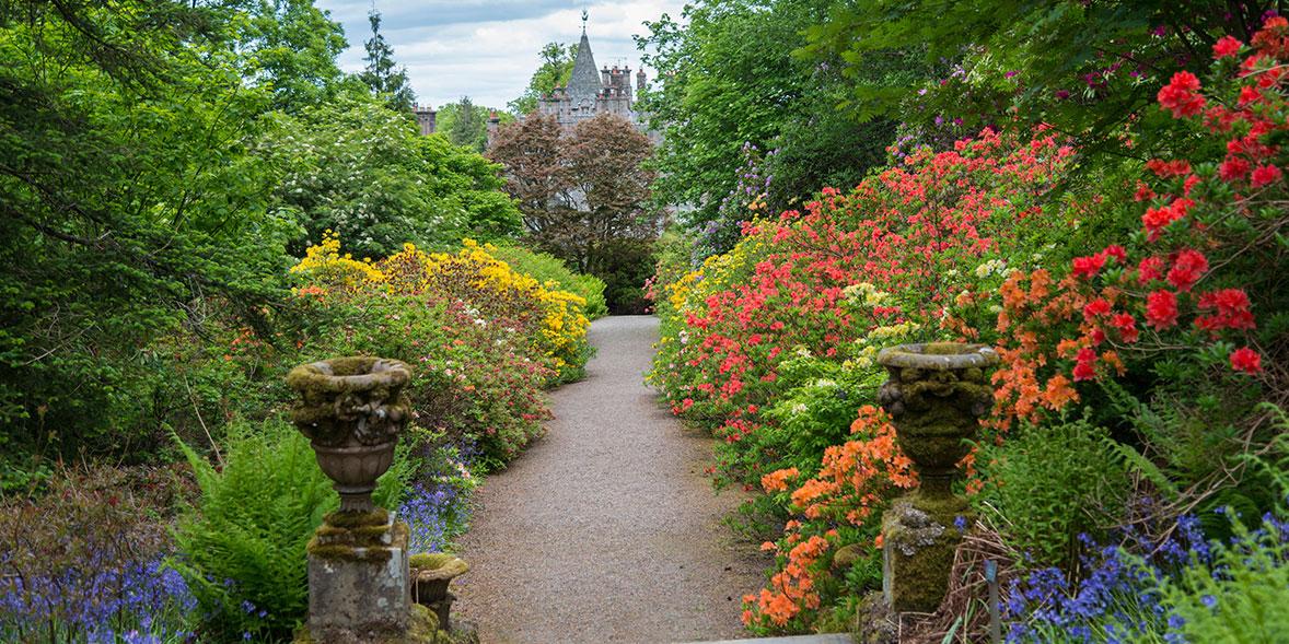 Dawyck Botanic Gardens