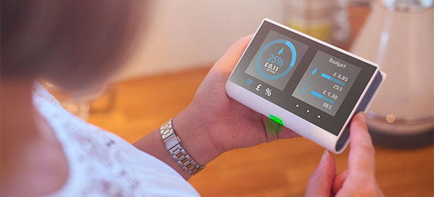 Smart meter in-home display