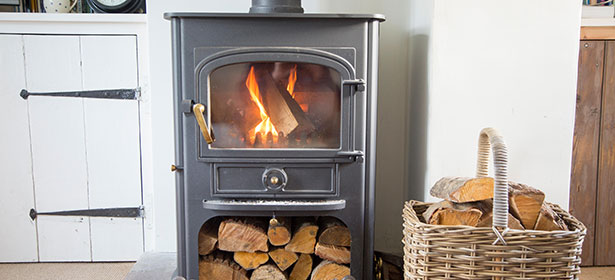 Wood-burning stove with logs stored within it