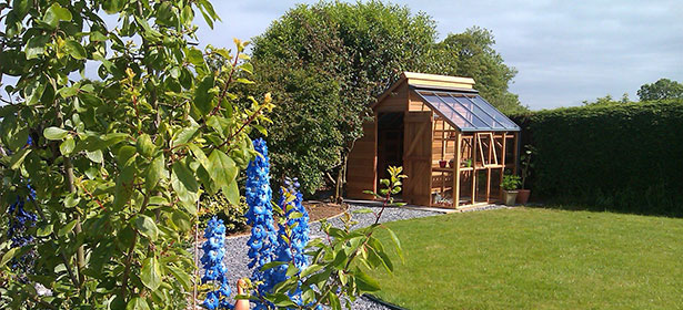 Shed with a greenhouse