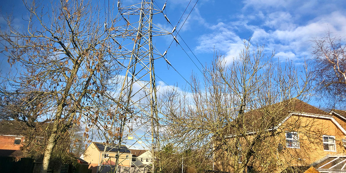 Electricity pylons with trees and houses