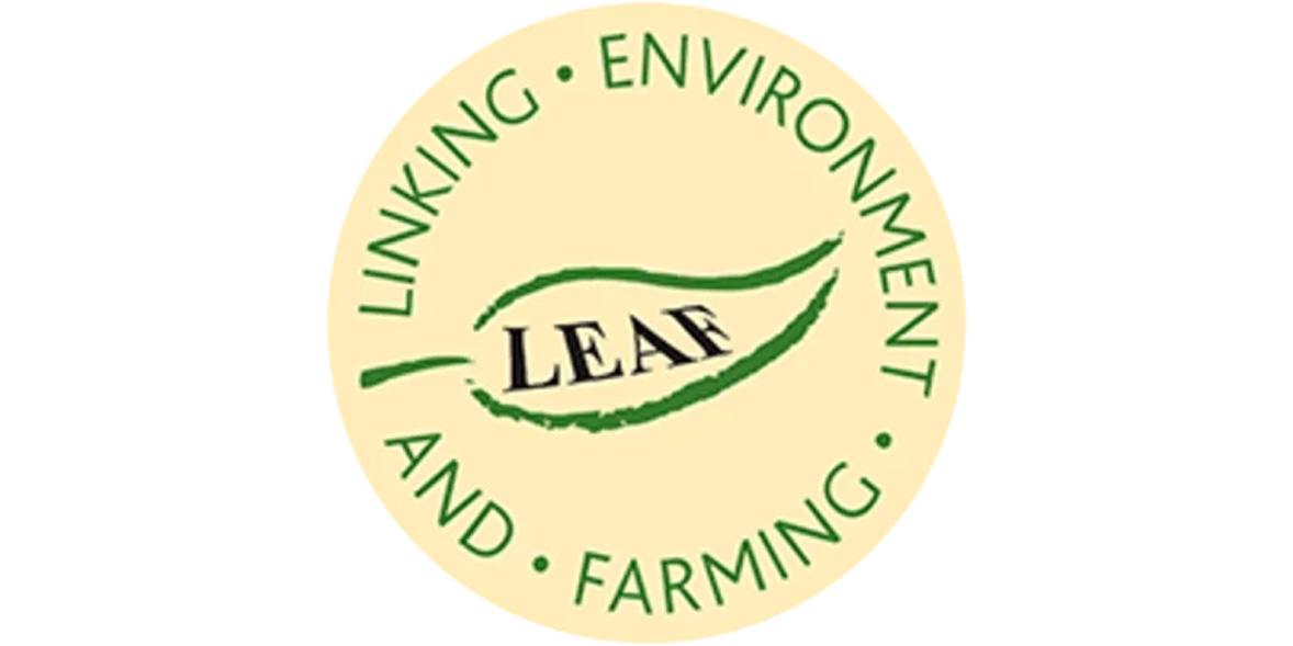 Lear Marque Logo