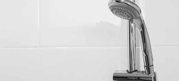 Mixer shower head