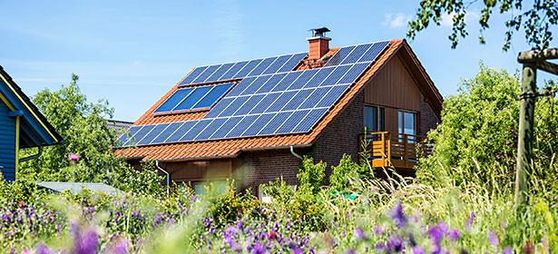 Solar panels 7 446487
