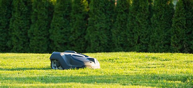 Robot lawnmower_190820 488863