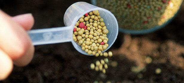 Controlled-release fertiliser