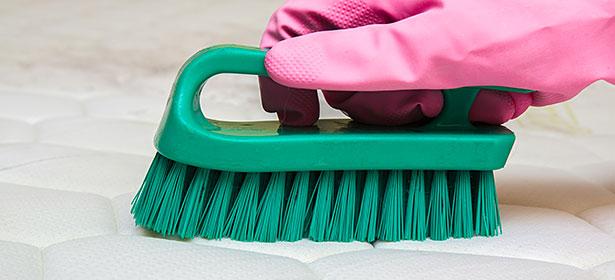 Scrubbing a mattress