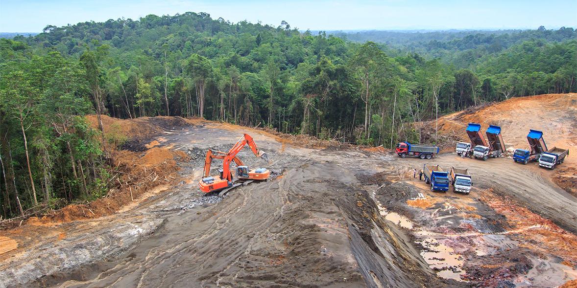 Image showing man-made deforestation
