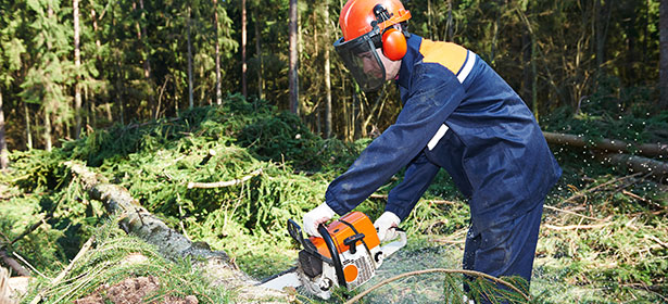 What do you wear when using a chainsaw?