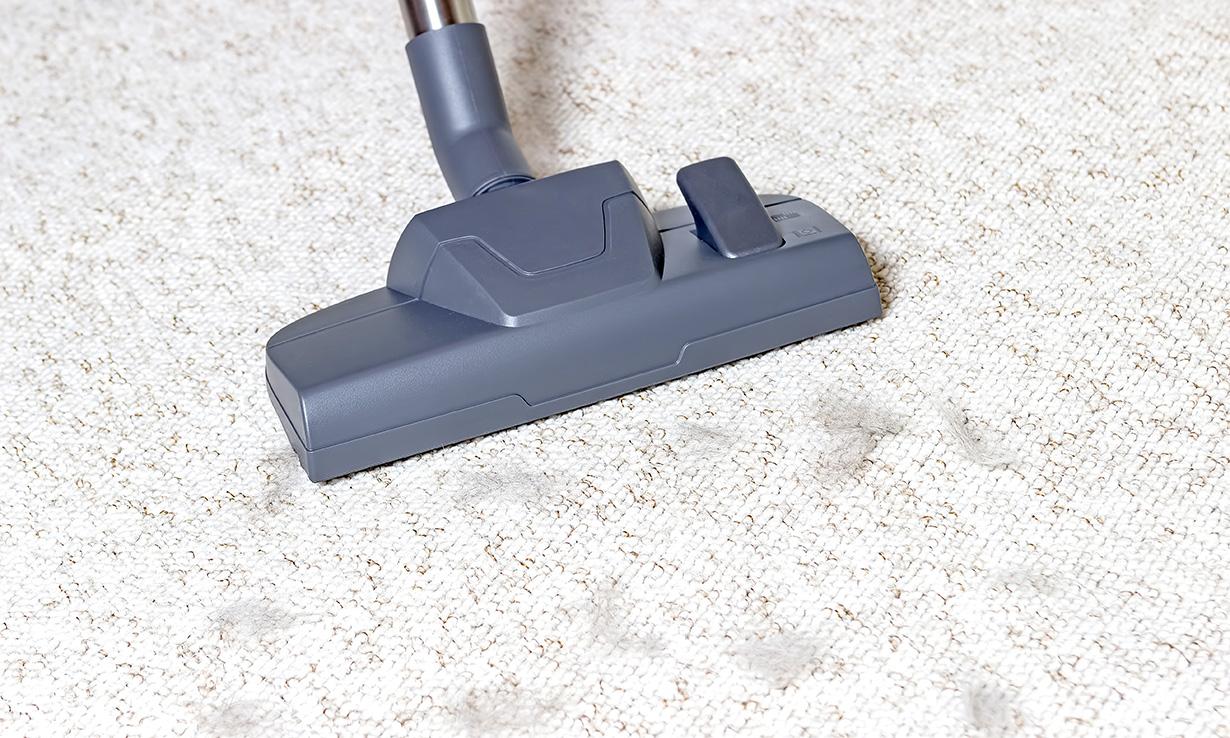 Vacuum cleaner floorhead cleaning carpet