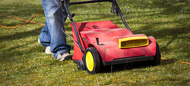Lawn rakers and scarifiers