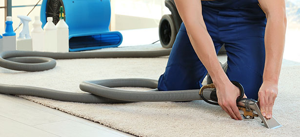 Carpet Cleaning Hatfield