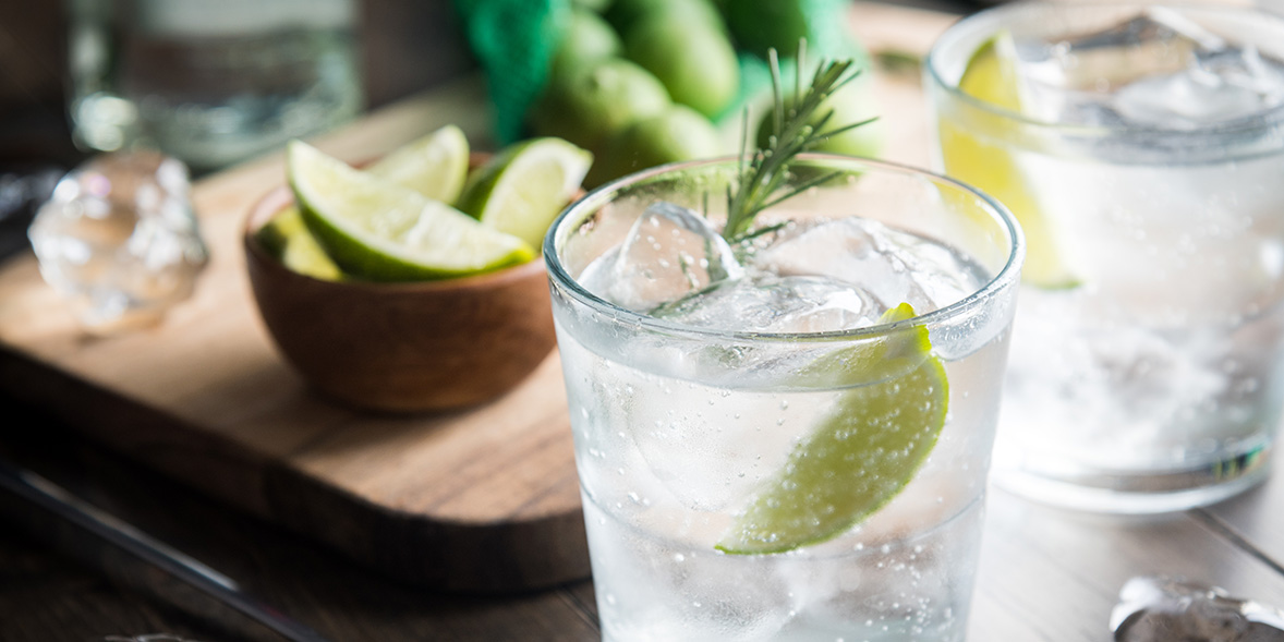 Gin and tonic with garnish