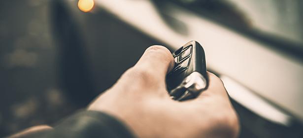 Which car survey
