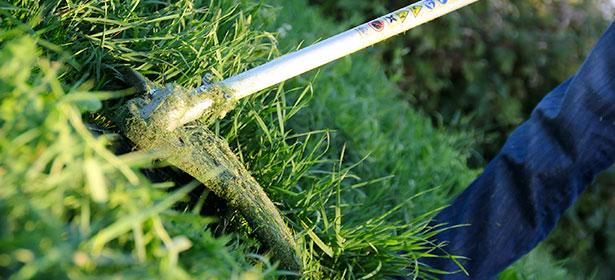 Cutting grass with a cordless grass trimmer