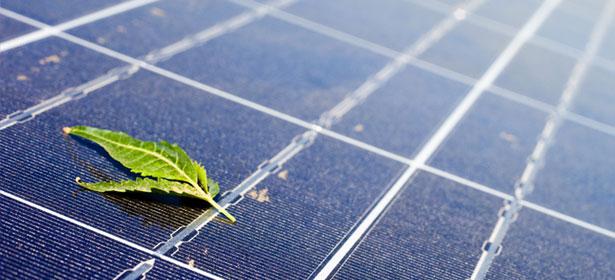 Solar panels 3 446483